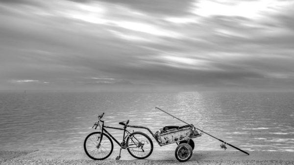 Bikepacking Fahrradanhänger
